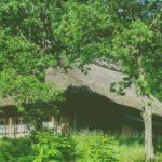 【山翠舎】古民家と古材のマッチング!古材買取をリノベーションに活かそう