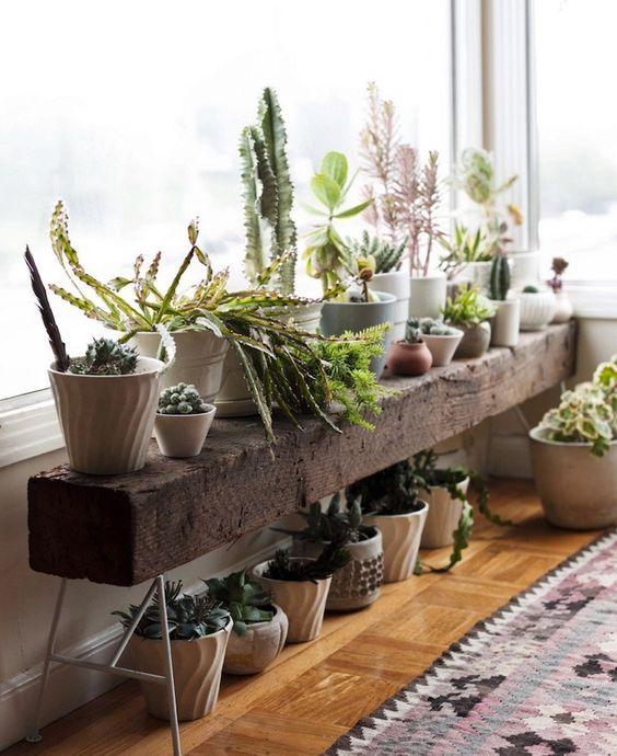 植物を等間隔に並べる