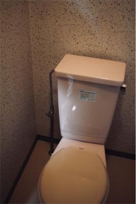 改装前のトイレ