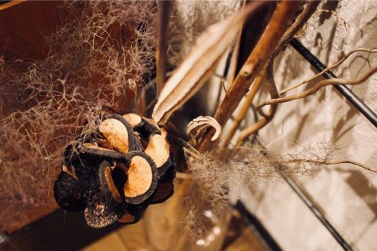 枝ものと一緒にディスプレイしたドライフラワーのバンクシア