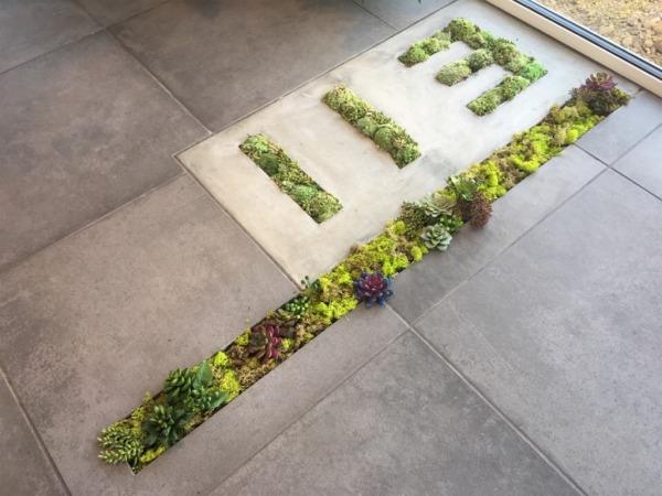 土間に苔によるリヨの文字