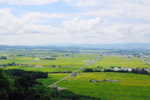 キトウシ展望閣から見た東川一望